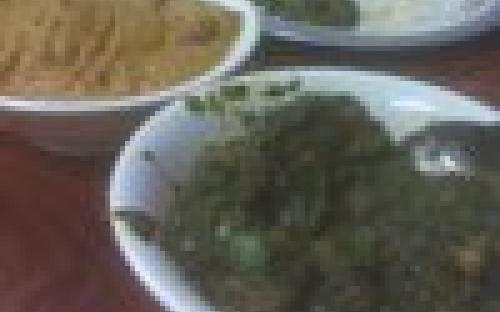 taste_buds_indian_food94085-4.jpg